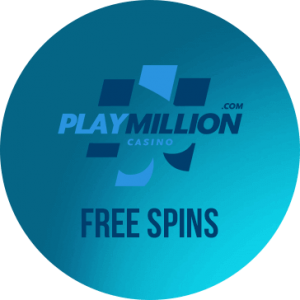 Онлайн казино PlayMillion логотип